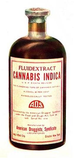 INDICA MEDICINE