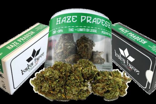 Haze Pradesh