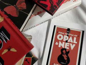 """Música, jornalismo e a questão racial nos EUA em """"The Final Revival of Opal & Nev"""" (Resenha)"""
