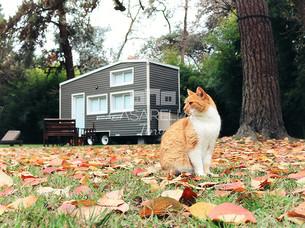 ¡Viví la experiencia Tiny House!