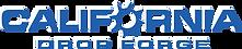 CDF_logo_h_NEW.png