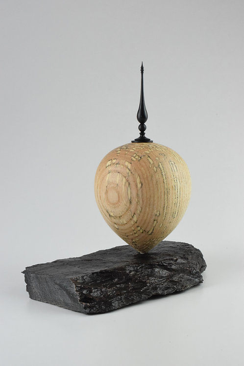 Spalted Ash hollow with African Blackwood finial,form on slate