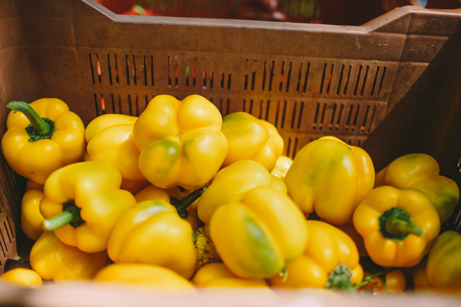 20141012_Farmers Market-17