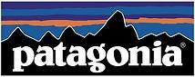 patagonia-logo.jpeg