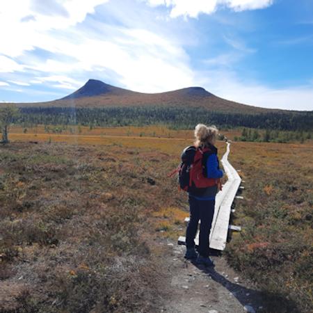 Vandring och yoga i Lofsdalsfjällen 2021