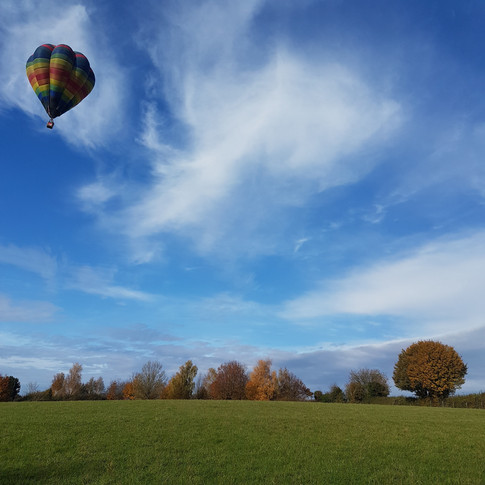Hot air balloon over Field with a View W