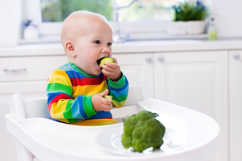 baby led weaned baby feeding self broccoli