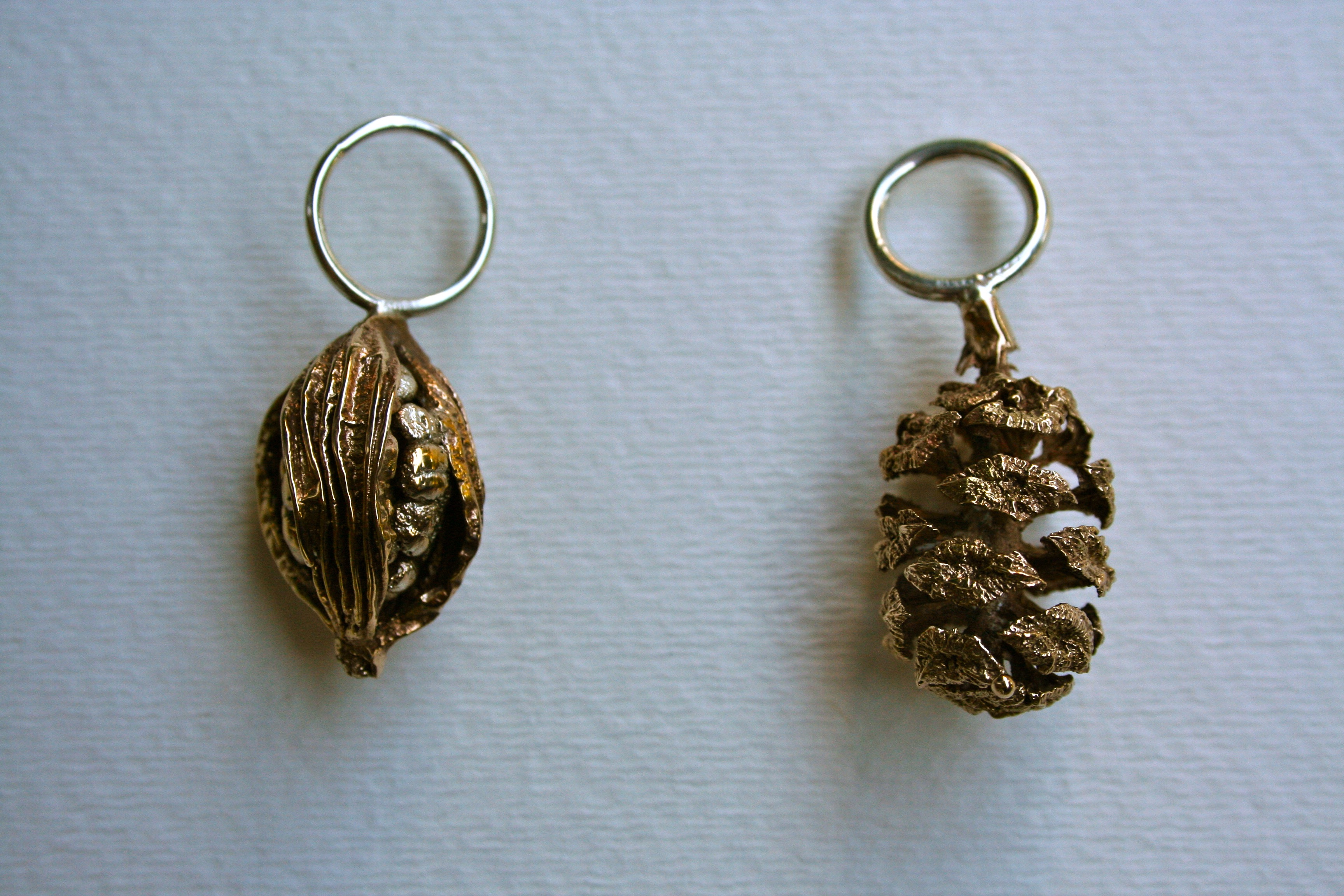 Seedpod and Pinecone