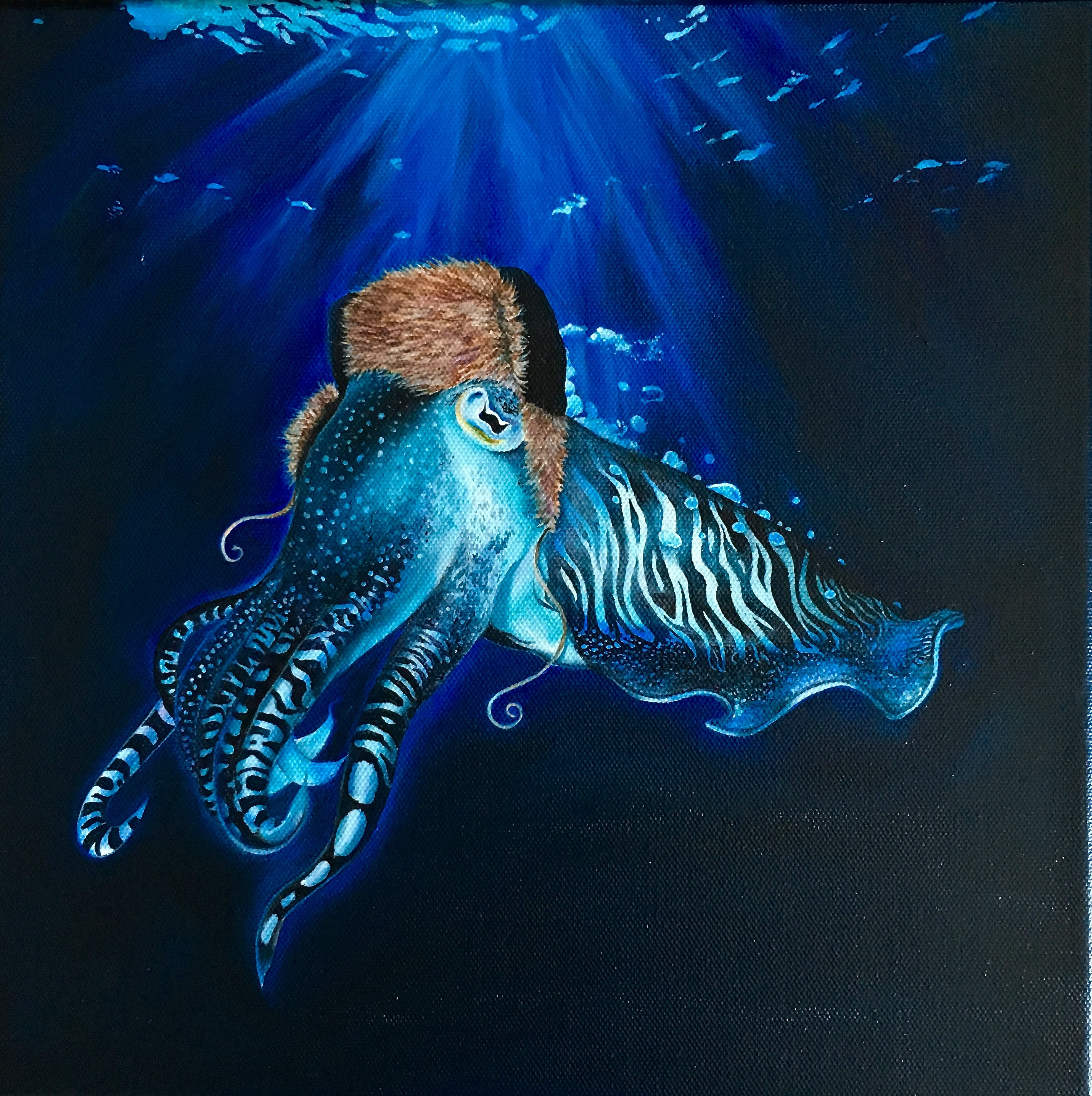 Cuttlefish in Winter Hat - Part 1 of triptych