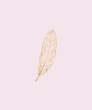 Feather background.png