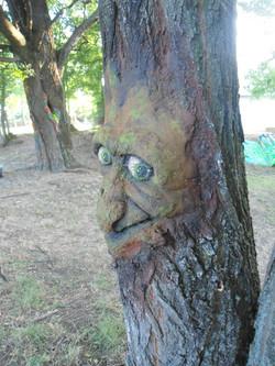 chalk on tree