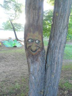 Baba's trees