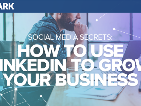 Social Media Secrets: How to Use LinkedIn to Grow Your Business