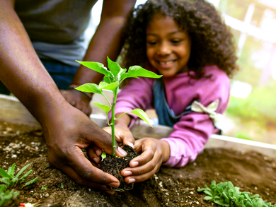Happy Plant a Vegetable Garden Day!