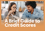 A Brief Guide to Credit Scores