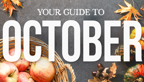 Your Guide to October