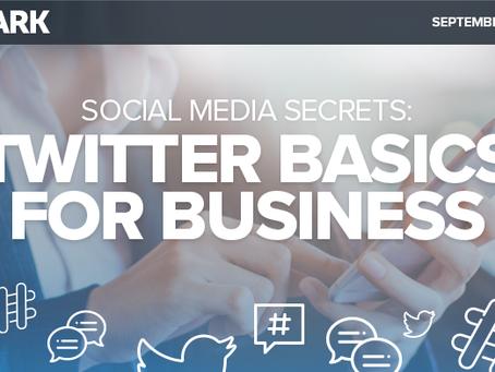 Social Media Secrets: Twitter Basics for Business