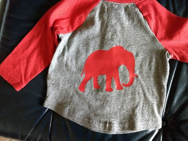 Party-Elephant on Child's Shirt 11-15-17_edited