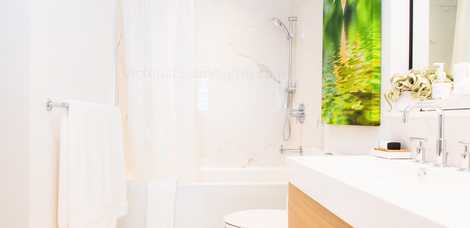Luxurious Spa Washroom