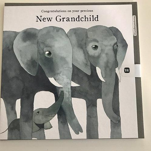 Baby Grandchild