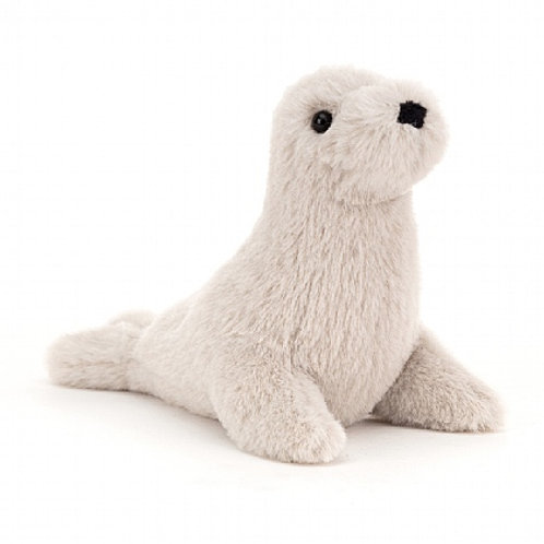 Rafferty Seal Pup