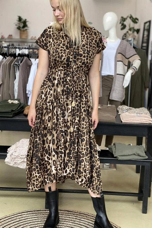 BLACK COLOUR dk leopard dress 10-12