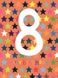 Birthday Age 8
