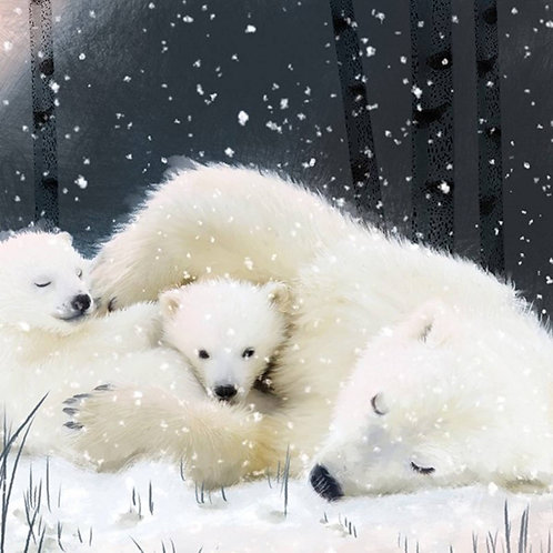 Polar Bears - Pack Of 6 Christmas Cards By Art File