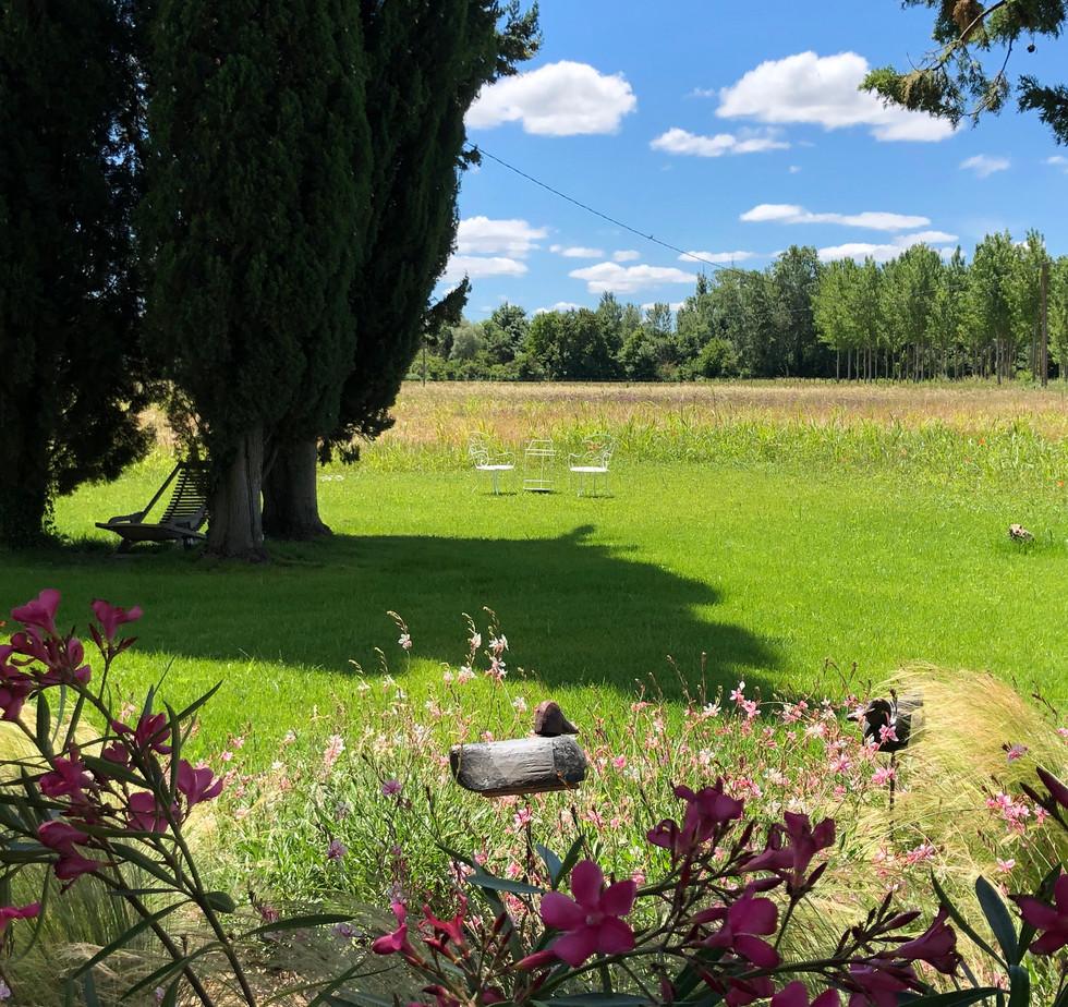 jardin fleurs et son apelant.jpg