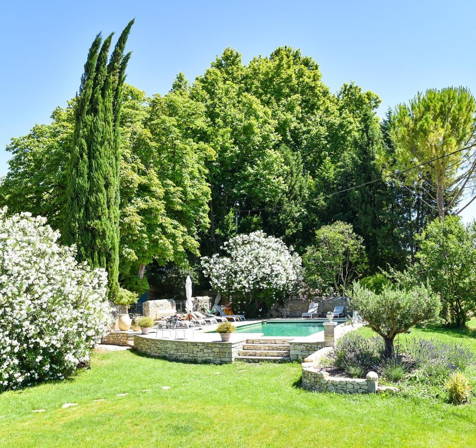 jardin vers piscine.jpg