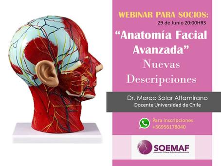 """WEBINAR 29/06/2020: """"Anatomía Facial Avanzada, Nuevas Descripciones"""""""