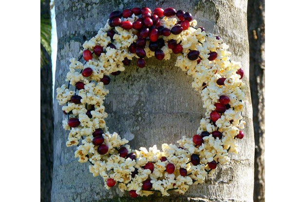 Popcorn Berry Wreath For Birds
