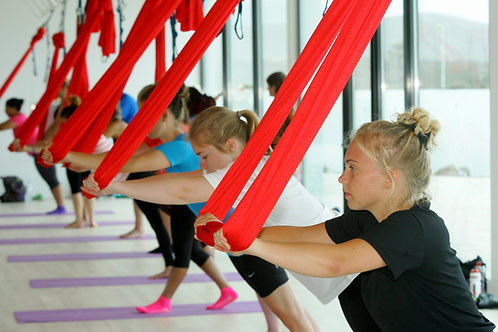 Manual Only CircusFit Aerial Pilates Level 1