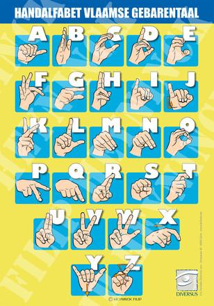 Vlaamse alfabet volwassene