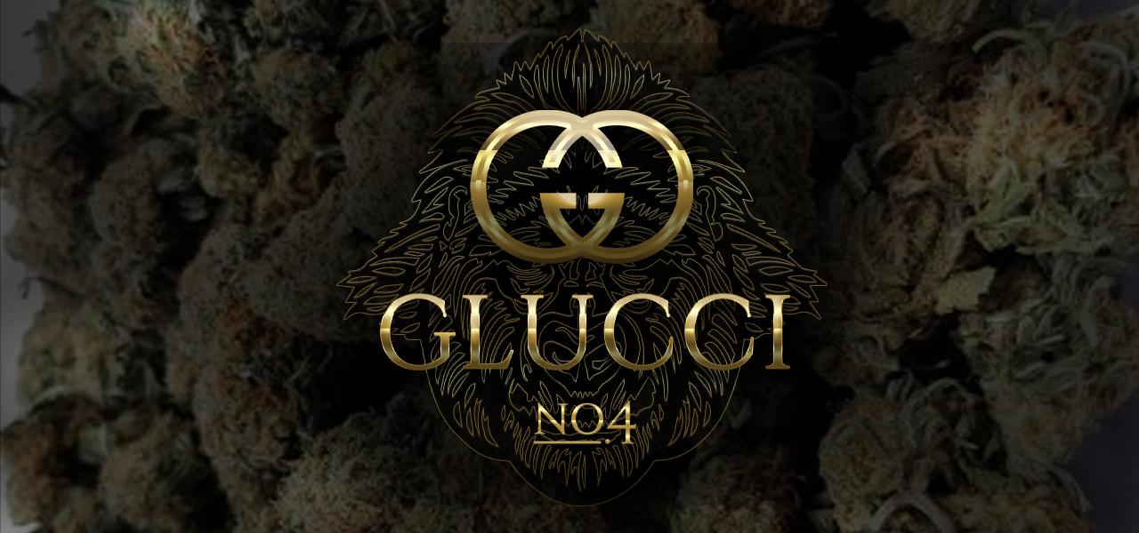 gluccislider.png