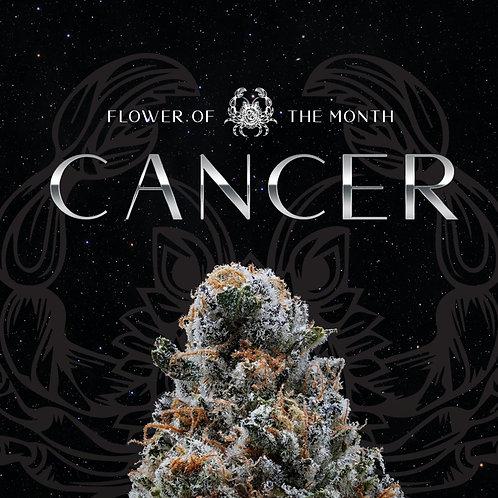*P.R* Cancer