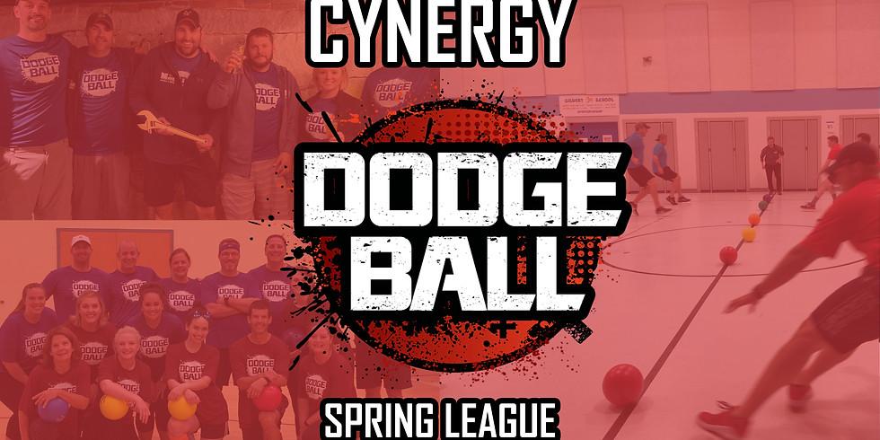 Spring Dodgeball League