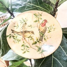 plateau-oiseau-les-ravisseuses.jpg