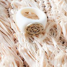 chevaliere-ivoire.jpg