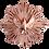 ex-voto-j-ai-vu-la-vierge-colombe-cuivre