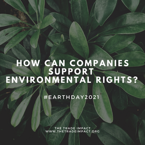 How Can Companies Support Environmental Rights?