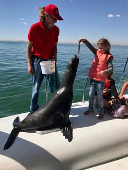Child feed seal.jpg