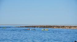 Kayak Point.jpg