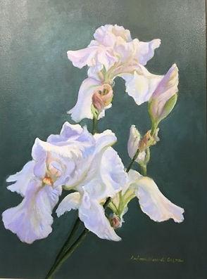 Iris by Barbara Grenna.jpg