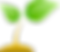 cultivar-mini.png