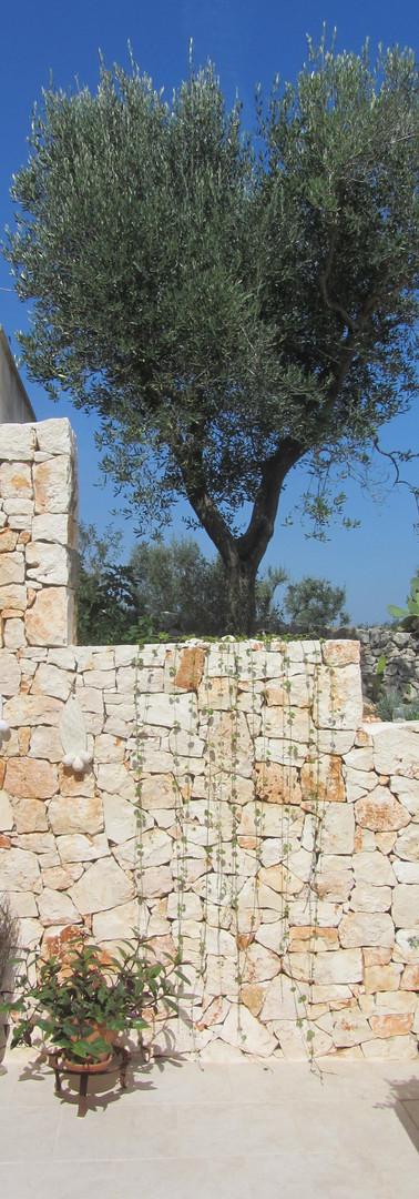 CdS - Terrace La Pineta