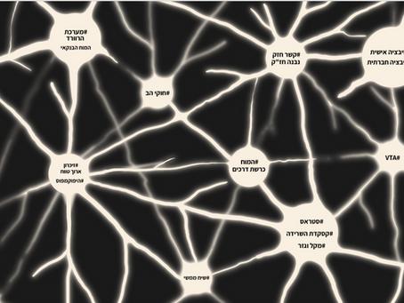 איך אנחנו בונים מפת מושגים - צ`אנק נוירופדגוגי -  בקורס נוירופדגוגיה? (8)