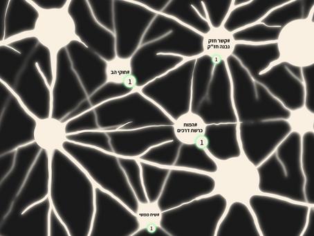 איך אנחנו בונים מפת מושגים - צ`אנק נוירופדגוגי -  בקורס נוירופדגוגיה?