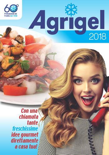 proposta grafica cover catalogo agrigel