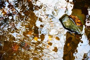 OllisPhoto_KO31610-150.jpg
